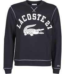 sweater lacoste pullo