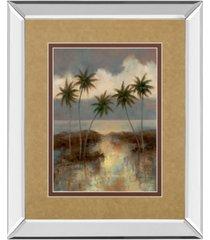 "classy art after the rain ii by t.c. chiu mirror framed print wall art, 34"" x 40"""