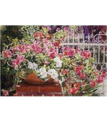 "david lloyd glover tangled terra cotta pot canvas art - 20"" x 25"""