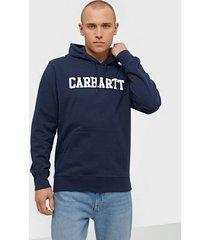 carhartt wip hooded college sweat tröjor blue/white