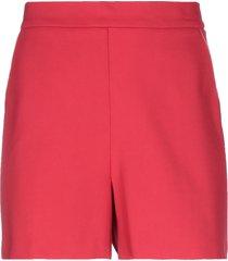 lacoste shorts