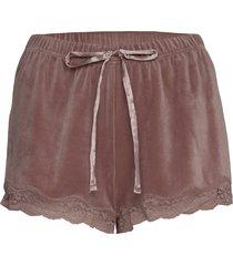 short velours scallop lace shorts rosa hunkemöller