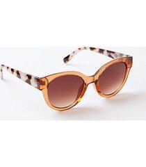 loft modern cateye sunglasses