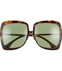 women's fendi 62mm oversize square sunglasses - dark havana/ green