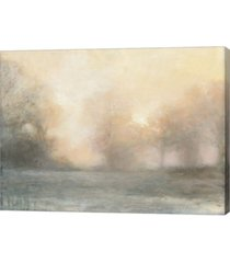 """metaverse top of the field by julia purinton canvas art, 26.75"""" x 20"""""""