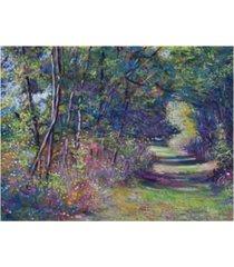 "david lloyd glover a walk in the forest canvas art - 37"" x 49"""