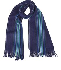 blue scarf with goji stripe motif