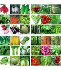 36 packs varieties 8000 seeds emergency survival heirloom vegetable non gmo