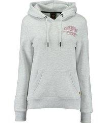 hoodie glitter sparkle grijs