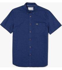 camisa lacoste regular fit masculina