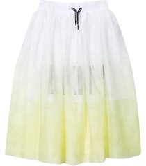 dkny skirt with gradient effect