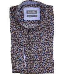 scotland blue dress hemd 19307wi53sb
