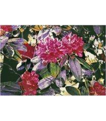 """david lloyd glover april dreams canvas art - 20"""" x 25"""""""