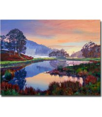 "david lloyd glover 'baroque dawn' canvas art - 32"" x 24"""