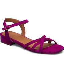 sandals 4025 shoes summer shoes flat sandals rosa billi bi