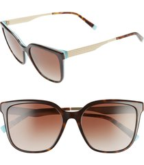 women's tiffany & co. 54mm gradient sunglasses - white havana/ brown gradient