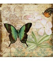 """jean plout 'inspirational butterflies 3' canvas art - 14"""" x 14"""""""