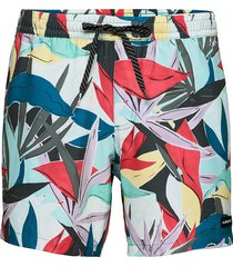 mystic session str volley 15 surfshorts multi/mönstrad quiksilver