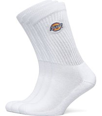 valley grove underwear socks regular socks vit dickies