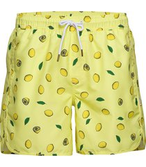 swim shorts sandhamn lemons badshorts gul dedicated