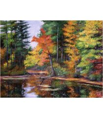 "david lloyd glover lakeside reflections canvas art - 20"" x 25"""
