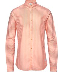 blauw oxford shirt in solids, stripe and checks skjorta casual rosa scotch & soda