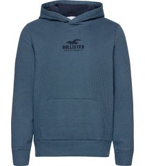 hco. guys sweatshirts hoodie blå hollister