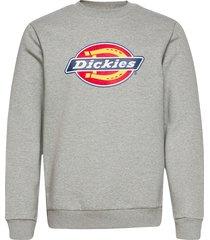 icon logo sweatshirt sweat-shirt tröja grå dickies