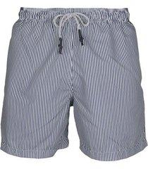 pantaloneta rayas delgadas azul navy