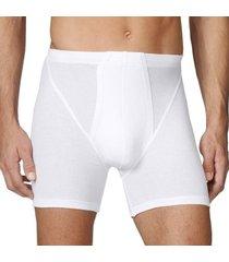 calida cotton 2 new boxer 20710 * gratis verzending *