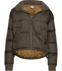w dwn paralta puffer gevoerd jack groen the north face