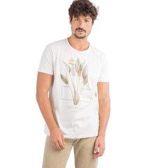 t-shirt taco eco friendly estampa tropical paradise cru cru - kanui