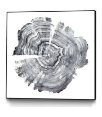 "giant art 30"" x 30"" tree ring abstract iv art block framed canvas"