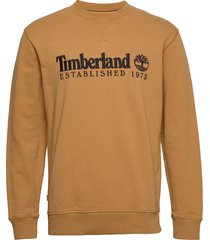 est1973 crew sweats sweat-shirt tröja orange timberland
