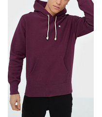 champion reverse weave hooded sweatshirt tröjor burgundy