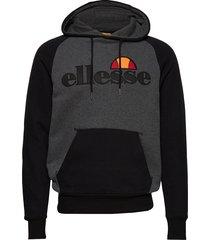 el taliamento hoody hoodie trui grijs ellesse