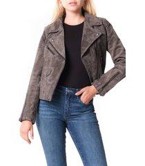 women's blanknyc vital signs suede moto jacket, size small - grey