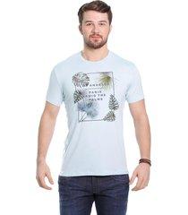 camiseta javali azul palm