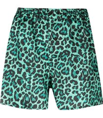 laneus leopard print fitted shorts - black