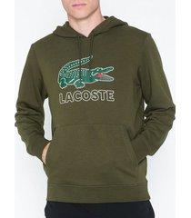 lacoste hoodie tröjor mörk grön