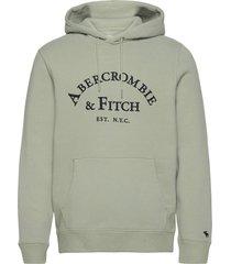 anf mens sweatshirts hoodie grön abercrombie & fitch