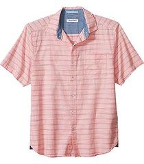 desert breeze striped polo shirt