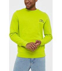 tommy hilfiger basic embroidered sweatshirt tröjor lemon