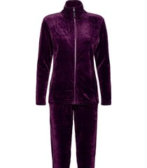decoy velour homewear set pyjamas lila decoy