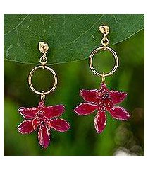 natural orchid flower earrings, 'spring celebration' (thailand)
