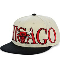 mitchell & ness chicago bulls winners circle snapback cap