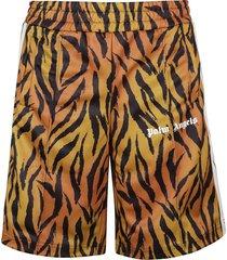 palm angels shorts sport tiger