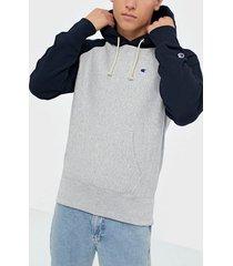 champion reverse weave hooded sweatshirt tröjor grey melange