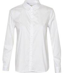 bimini shirt