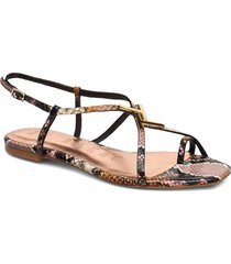 lerinas shoes summer shoes flat sandals multi/mönstrad ted baker